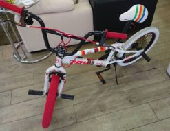 Raychell+ レイチェルプラス BMX 自転車 RX+01 20インチ
