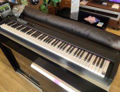 KORG / コルグ デジタルピアノ 電子ピアノ D1 楽器