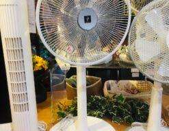 SHARP*扇風機(PJ-H3DS-W,2018年製)買取しました!